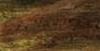 Lodewijk de Vadder: A Wooded Dune Landscape