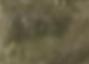 Lodewijk de Vadder: Cottage